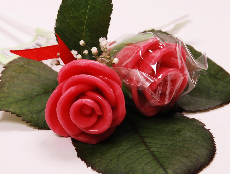rose_rot_1500_1.jpg